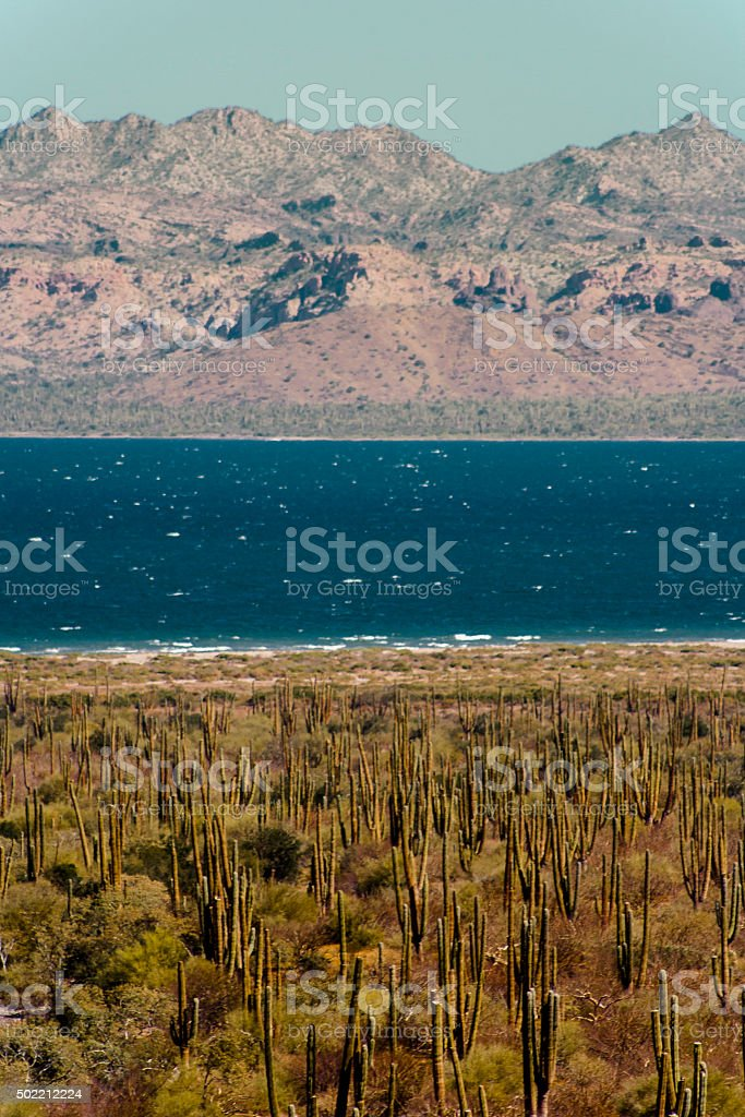 Desert, Lake and Mountains, Baja California. stock photo
