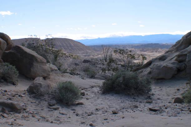 Desert Landscape 2 stock photo