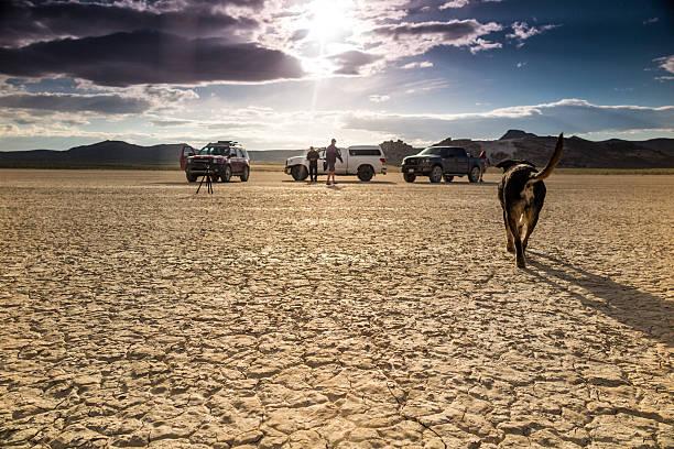 wüstenlandschaft film-crew und hund - dokumentation stock-fotos und bilder