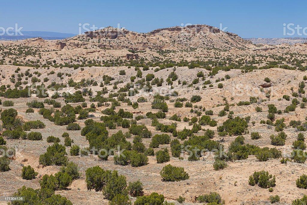 Desert Landscape in New Mexico stock photo