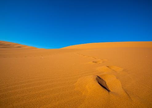 Desert Landscape In Sossusvlei In The Namib Desert In Namibia Stock Photo - Download Image Now