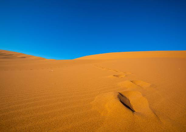 Desert landscape in Sossusvlei in the Namib Desert in Namibia stock photo