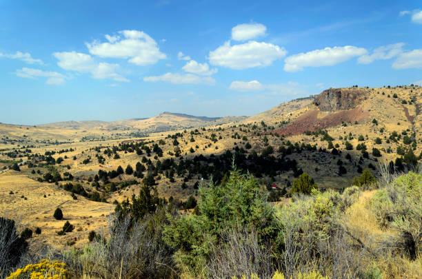 Desert landscape in summer near Jordan Valley, Oregon stock photo