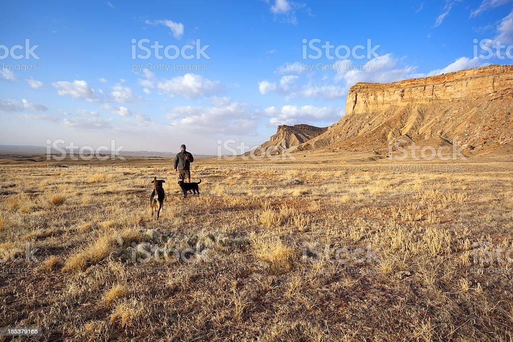 desert landscape man and dogs sunrise royalty-free stock photo