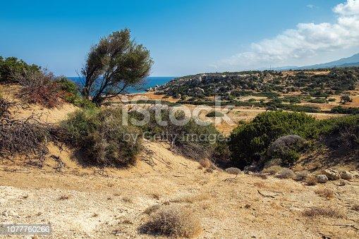 istock Desert landscape of Northern Cyprus coastline with tree 1077760266