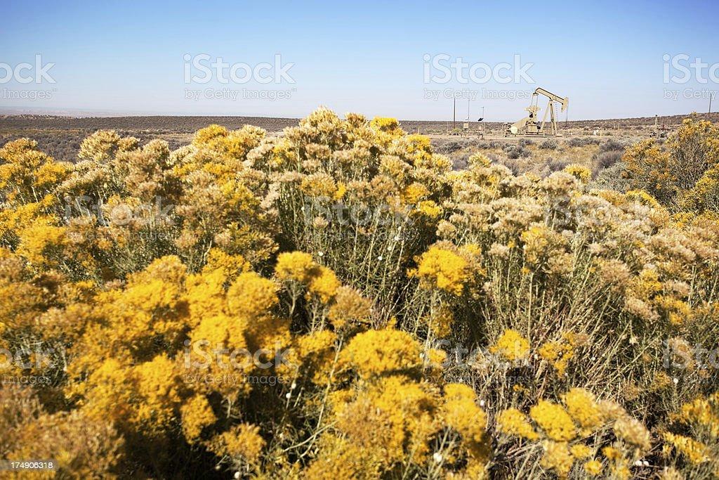 desert landscape oil rig stock photo