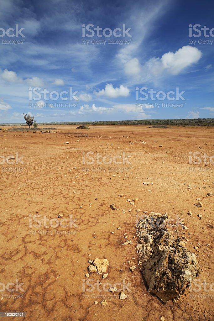 Desert landscape on the Hato Plain, Curaçao, Netherlands Antilles royalty-free stock photo