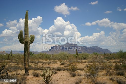A landscape in the desert. The foreground has a saguaro cactus and a cactus bush, the background is the superstition mountain range. The sky is 100% nature, no photoshop work.