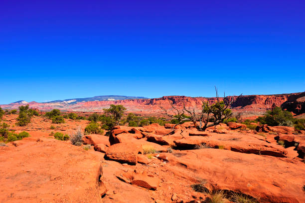 Desert Landscape Scenic red rocks and a desert landscape entrada sandstone stock pictures, royalty-free photos & images