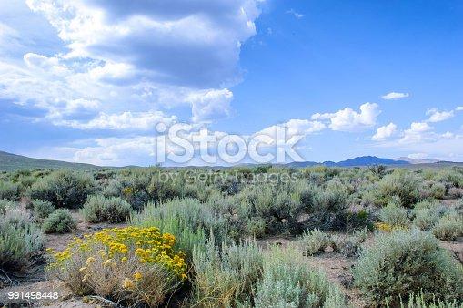 'Remote desert landscape with sagebrush under a cloudy sky.  Taken on the Northern Nevada.