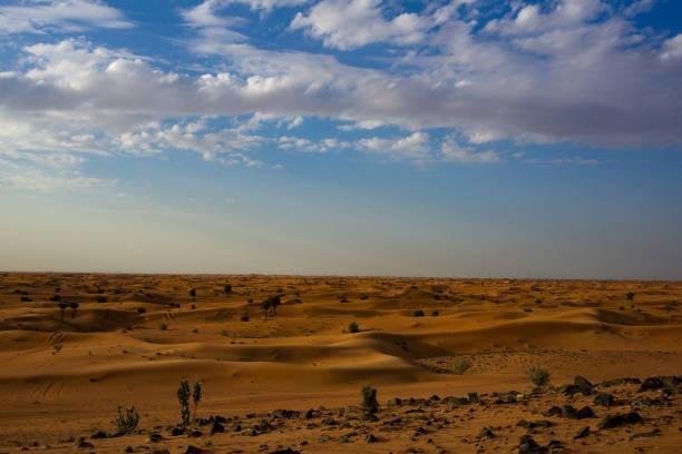 Wüste Landschaftsansicht in Dubai – Foto