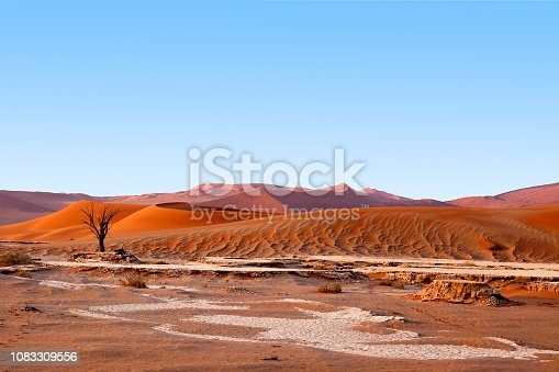 1083309578 istock photo Desert landscape with orange sand dunes and one dead dry tree on bright blue sky background, Naukluft National Park Namib Desert, Namibia, Southern Africa 1083309556