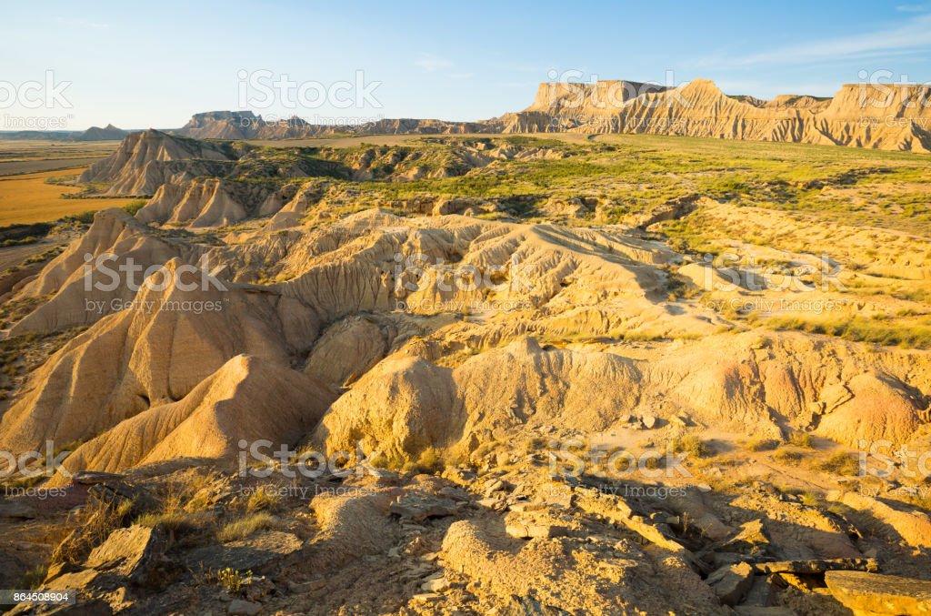 desert landscapein summer morning stock photo