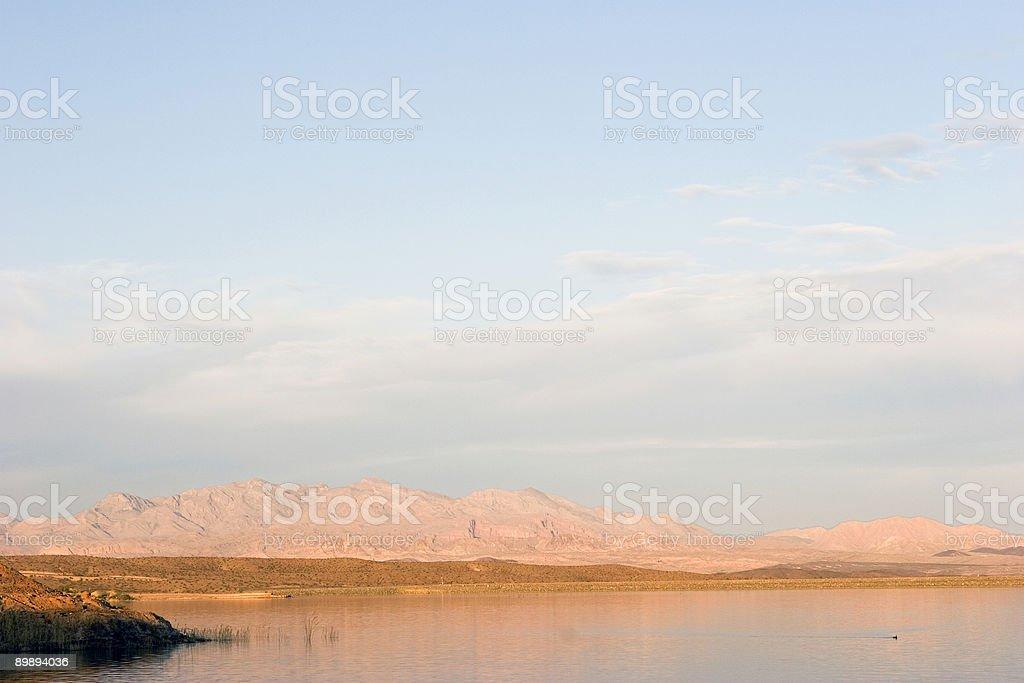 Desert Light At Dusk royalty-free stock photo