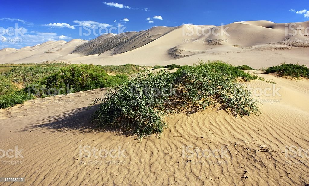 desert - mongolia royalty-free stock photo