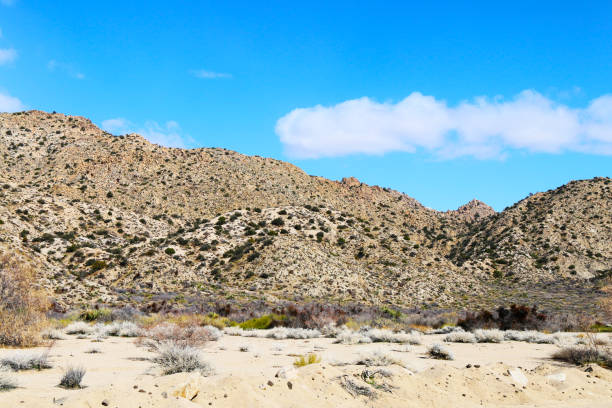 desert mountain dry river blue sky stock photo