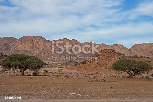Richtersveld National Park was proclaimed in order to preserve this unique mountain desert wilderness.