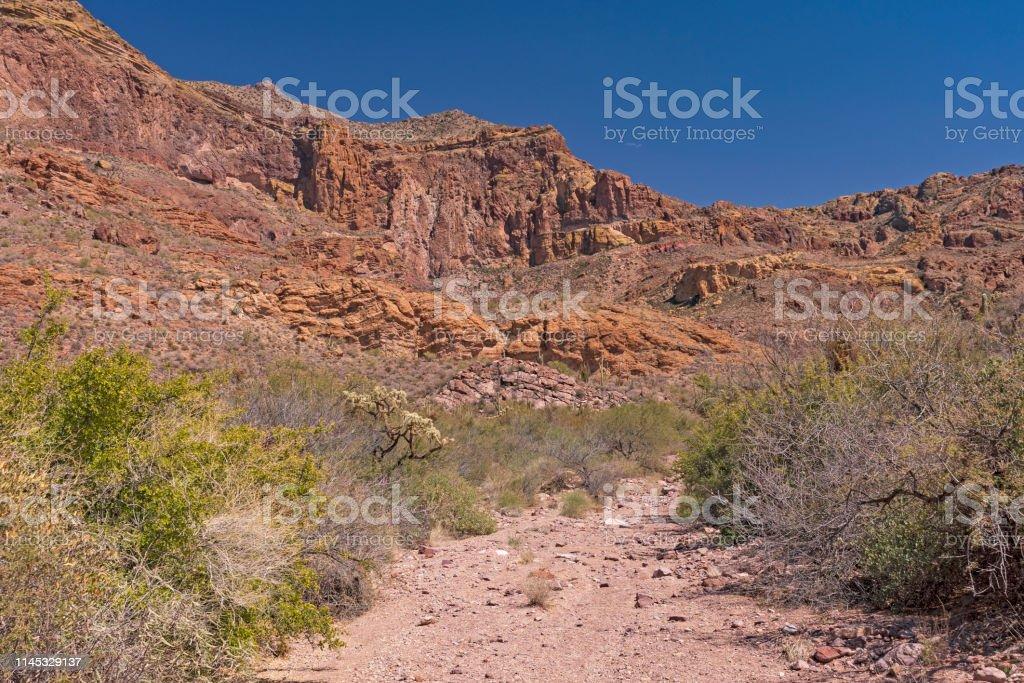 Desert Mountains Viewed from a Desert Wash in Organ Piepe Cactus...