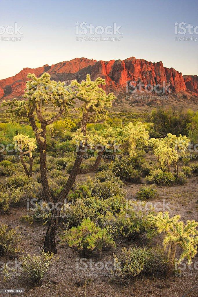 Desert Mountians royalty-free stock photo