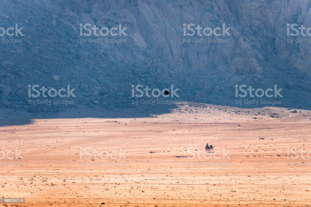 Çöl doğa stok fotoğrafı