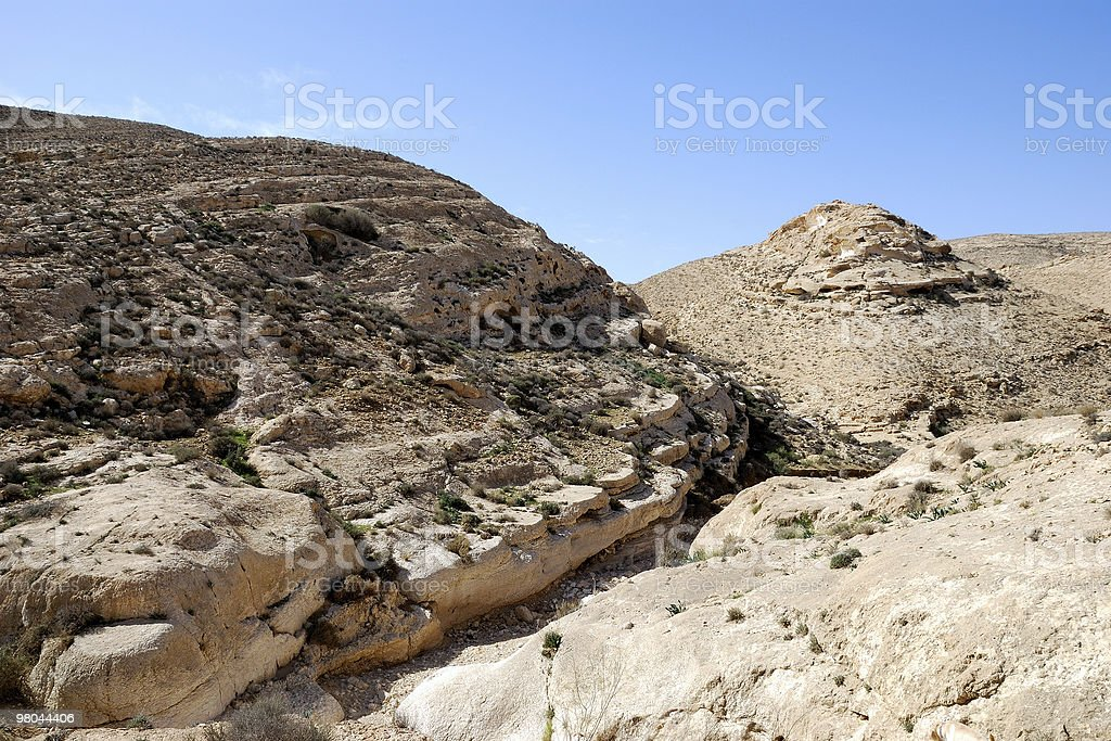 Desert Negev royalty-free stock photo
