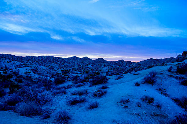 Desert Night stock photo