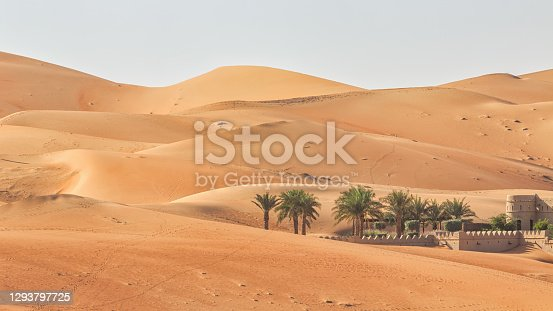 Panorama of Desert Oasis with Palm Trees inside the Abu Dhabi Empty Quarter Desert surrounded with Sand Dunes. Rub' al Khali Desert Oasis Village under blue cloudless sky. Rub' al Khali Desert Sand Dunes close to the border of Saudi Arabia and the United Arab Emirates. Abu Dhabi, United Arab Emirates, Middle East, Persian Gulf Countries, Western Asia.