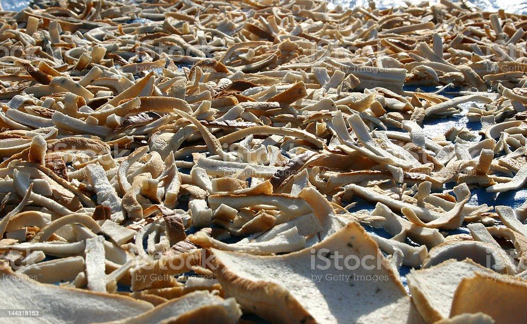desert of bones, dryed bread pieces stock photo
