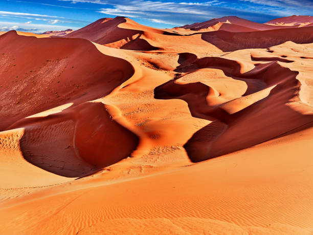 desert of namib with orange dunes desert of namib with orange sand dunes. namib desert stock pictures, royalty-free photos & images
