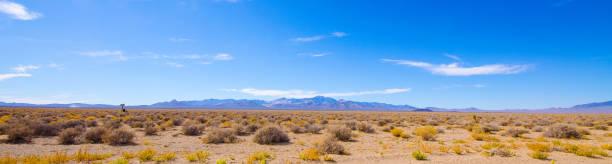 Desert panorama near Area 51 stock photo