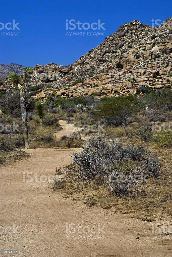 Desert Pathway royalty-free stock photo