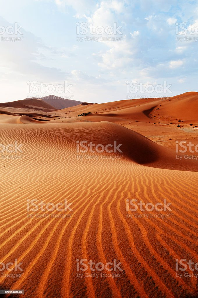 Desert pattern stock photo