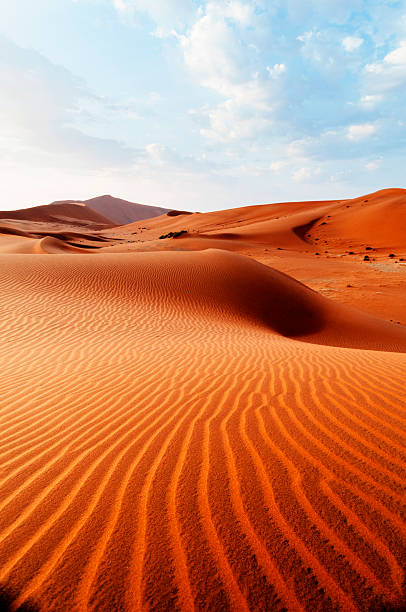 Desert pattern stock photo