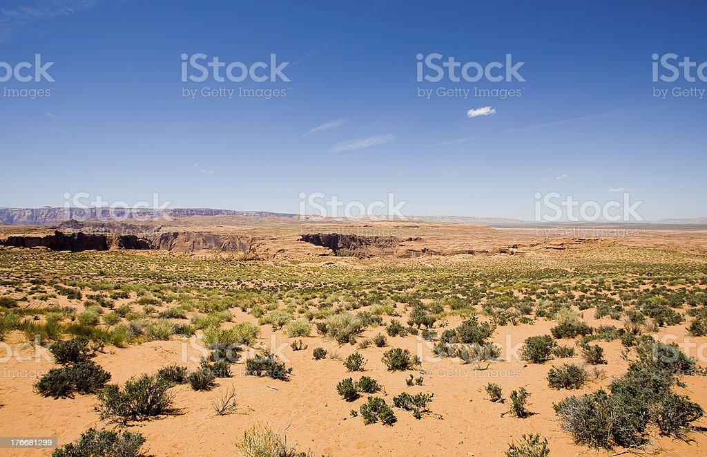 Desierto foto de stock libre de derechos