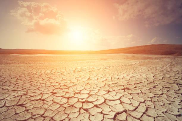 desierto  - desierto fotografías e imágenes de stock