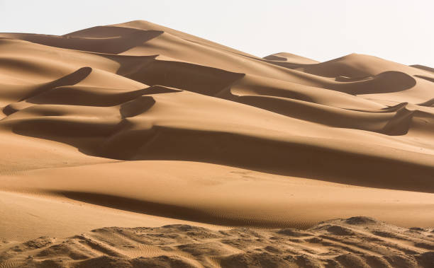 uae desert - sand dune stock photos and pictures