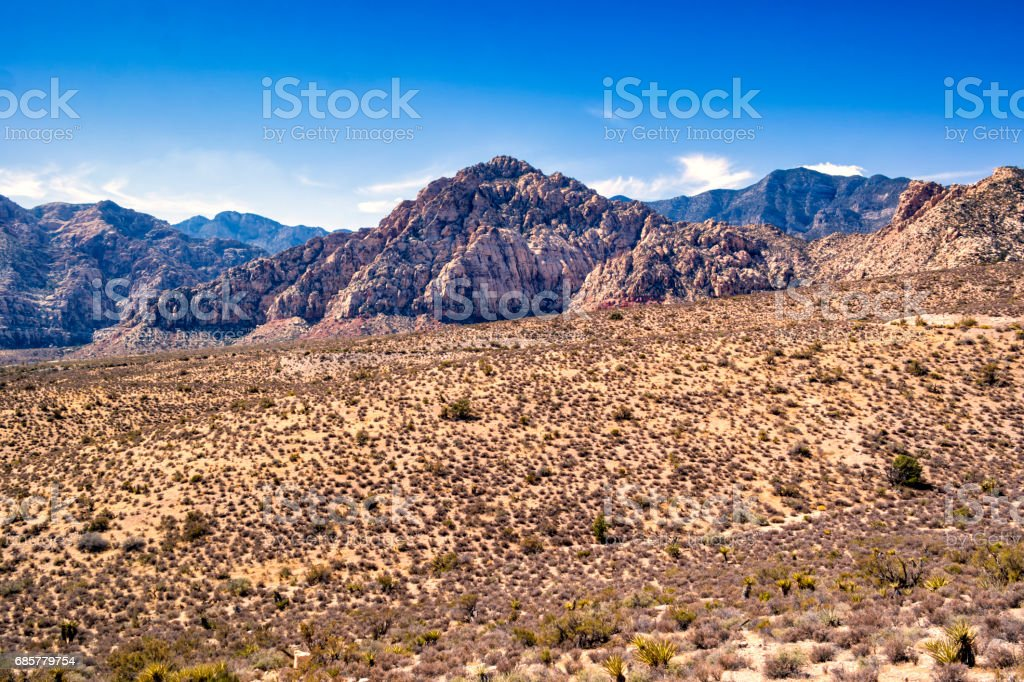 Desert place royalty-free stock photo