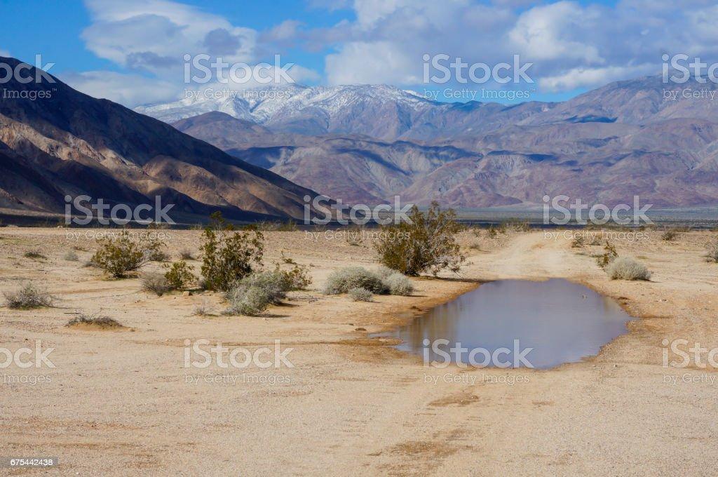 Desert Rain Water stock photo