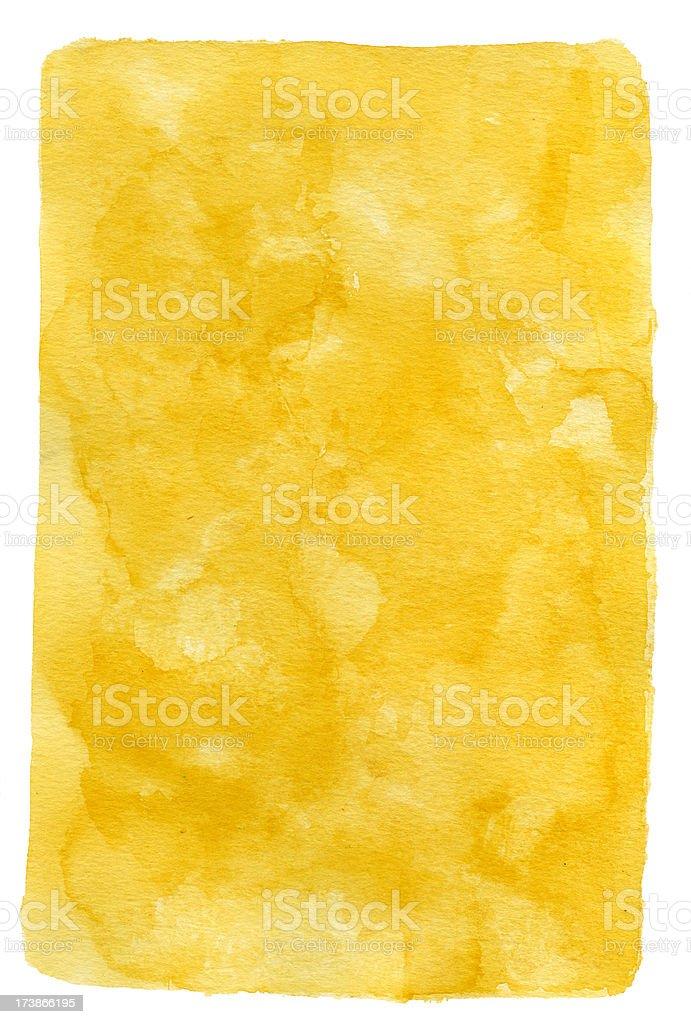 Desert Rat Golden Frame stock photo