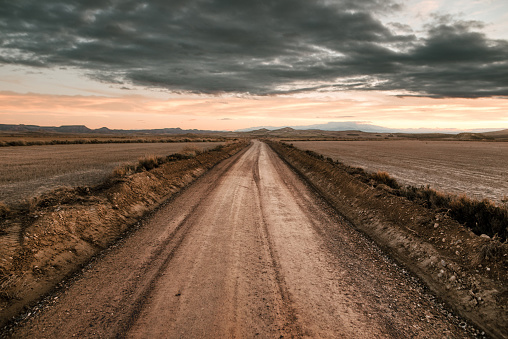 A dirt road in the middle of a desert