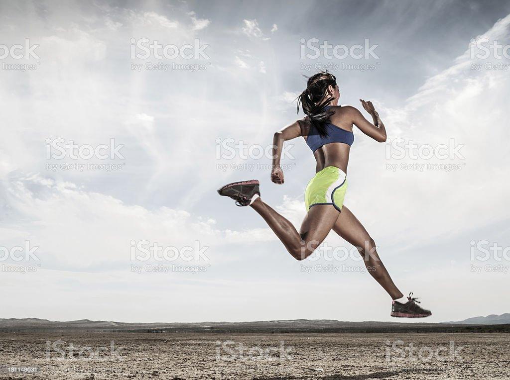 Desert Road Runner royalty-free stock photo