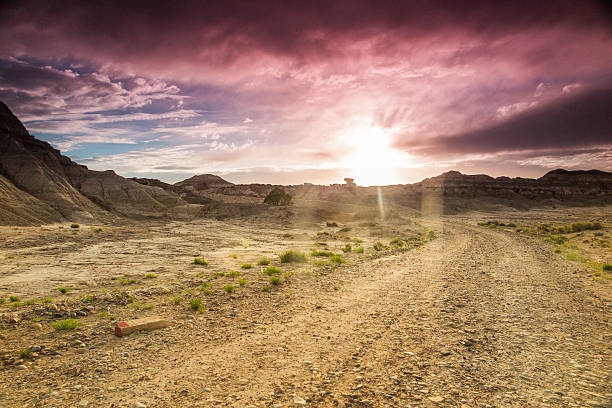 Viaje por carretera de paisaje del desierto - foto de stock