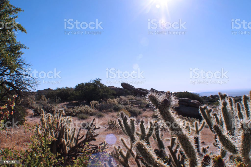 Desert Rock Landscape stock photo