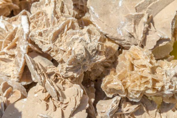 désert rose closeup - rose des sables photos et images de collection