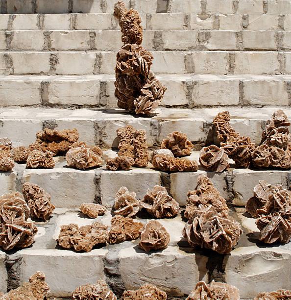 roses du désert - rose des sables photos et images de collection