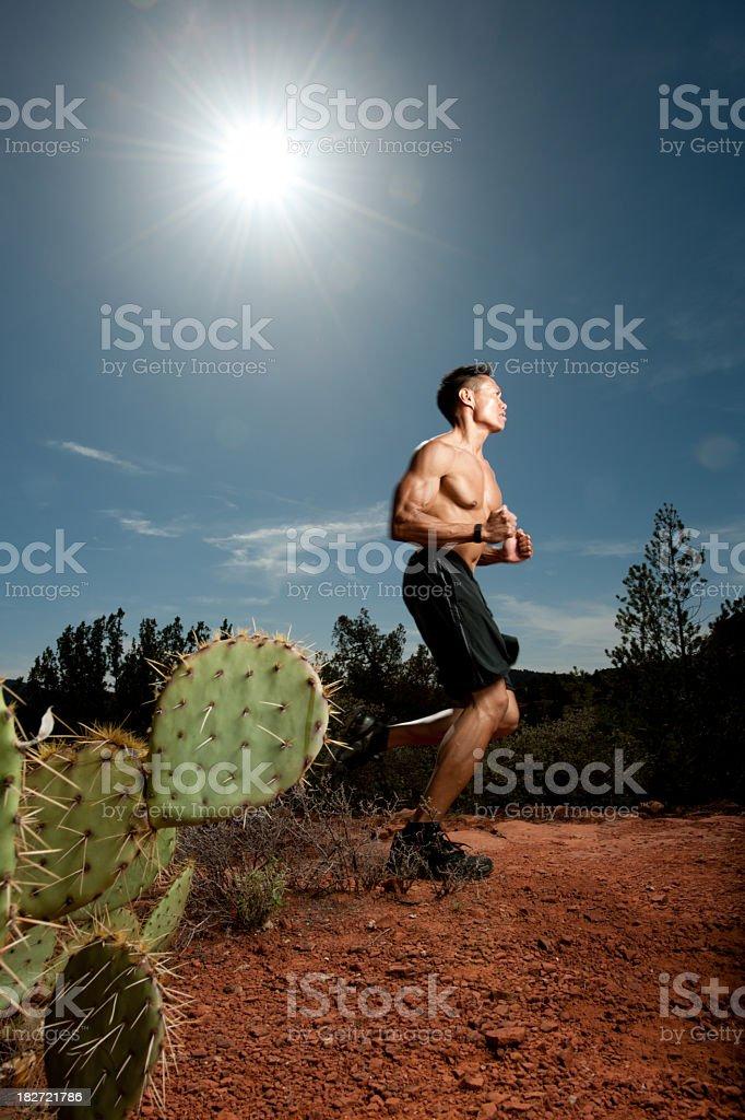 Desert runner royalty-free stock photo