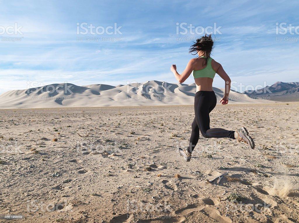 Desert Runner stock photo