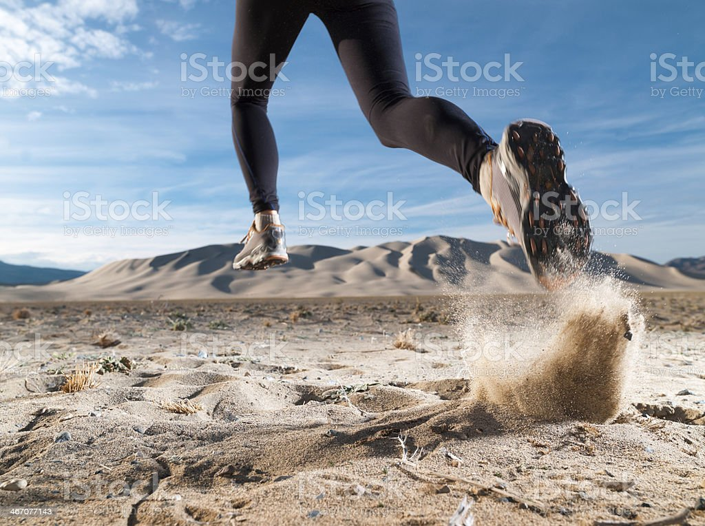 Desert Runner stock photo