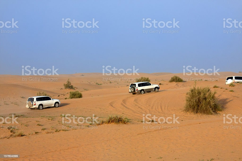 Desert safari royalty-free stock photo