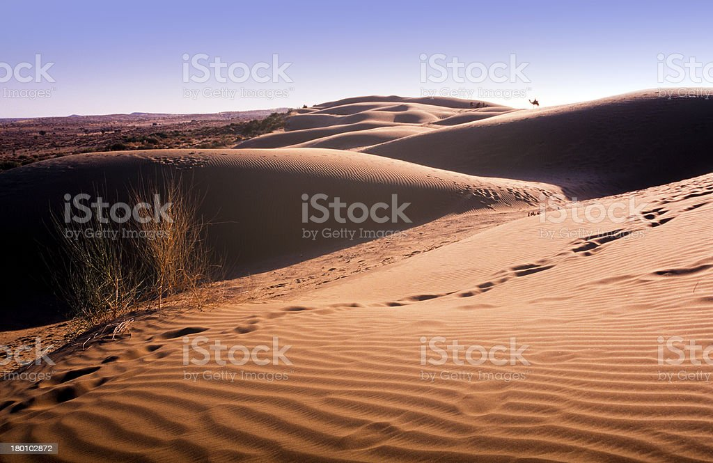 Desert Sand Dune royalty-free stock photo
